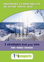 Strategie_BtoB_2009